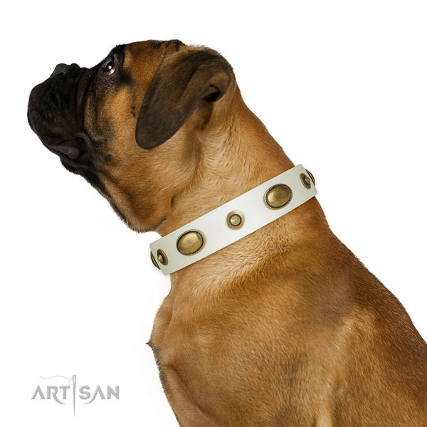Easy wearing dog collar of natural leather with incredible embellishments