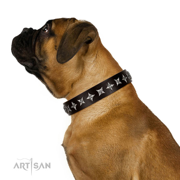 Walking decorated dog collar of best quality leather