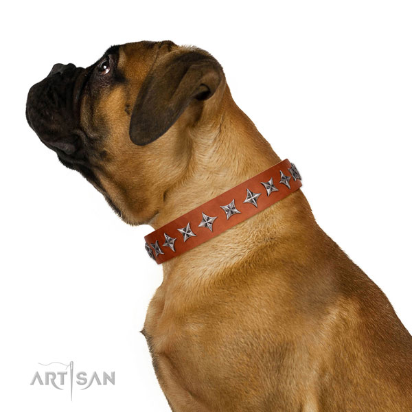 Reliable full grain natural leather dog collar with remarkable decorations