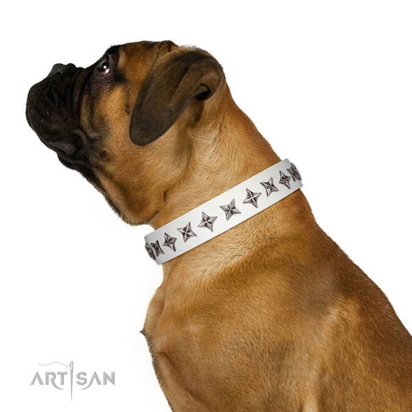 Best quality leather dog collar with top notch studs