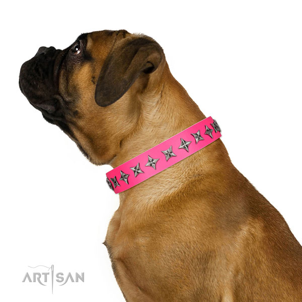 Top notch leather dog collar with stylish design embellishments