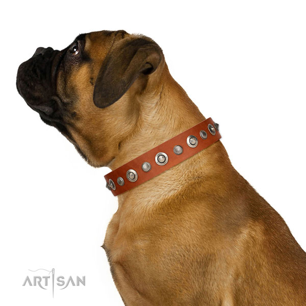 Top notch full grain genuine leather dog collar with unusual decorations
