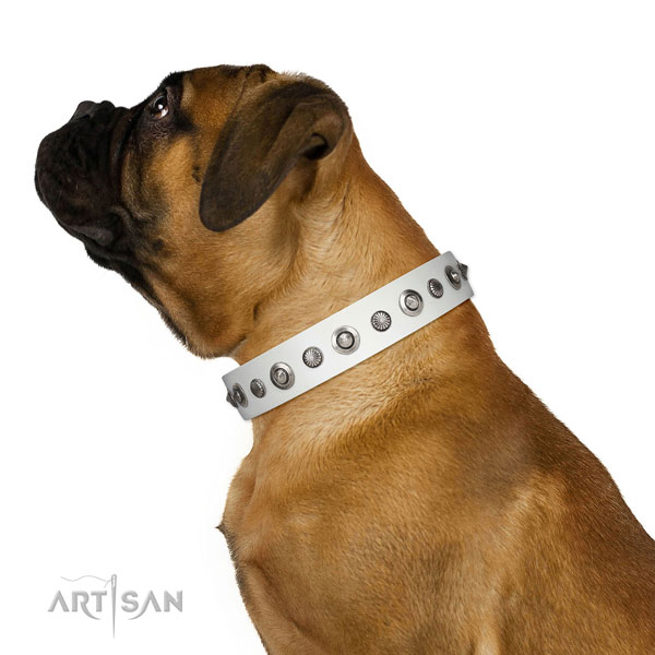 Full grain natural leather collar with reliable D-ring for your impressive four-legged friend
