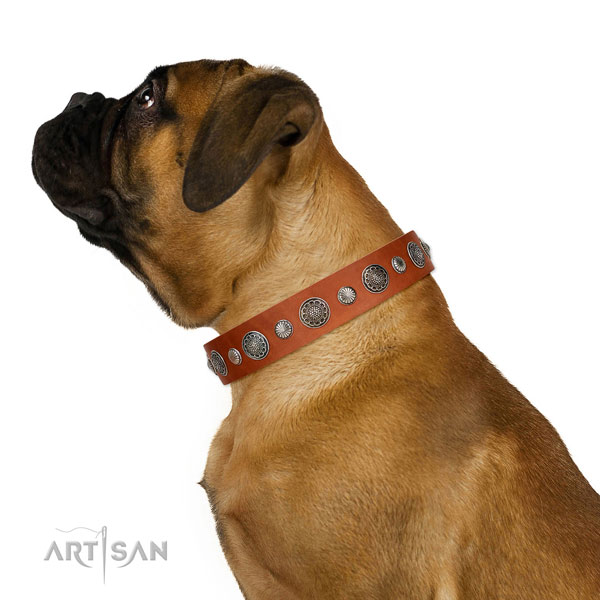 Adjustable genuine leather dog collar with rust-proof traditional buckle