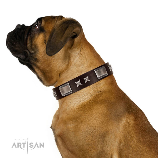 Easy to adjust collar of leather for your lovely canine