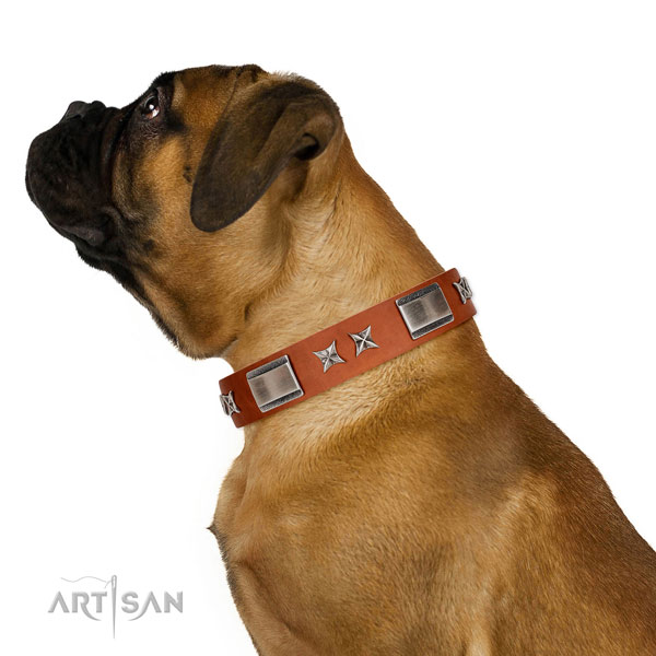 Everyday use soft full grain genuine leather dog collar with decorations