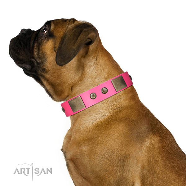 Corrosion resispinkt hardware on full grain leather dog collar for daily walking