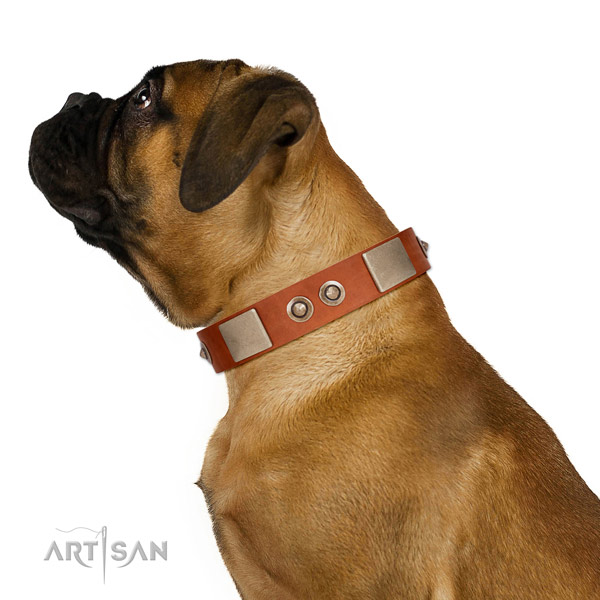 Rust-proof hardware on natural genuine leather dog collar for daily use