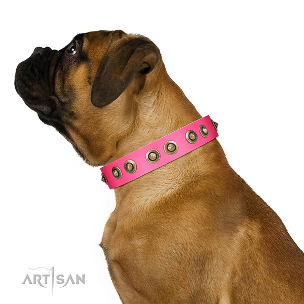 Full grain genuine leather collar with decorations for your attractive four-legged friend