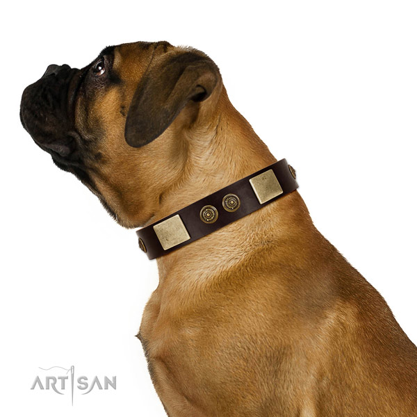 Everyday walking dog collar of natural leather with significant embellishments