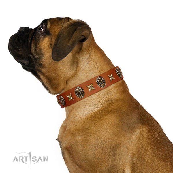 Easy adjustable full grain genuine leather dog collar with adornments