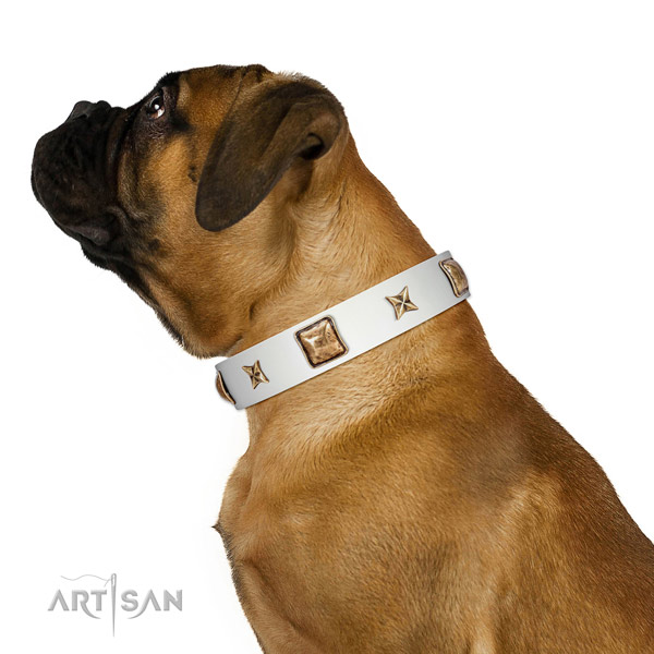 Comfortable full grain leather dog collar with embellishments