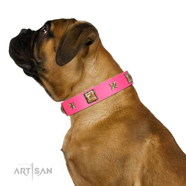 Natural leather dog collar of reliable material with significant adornments