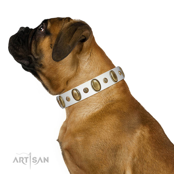 Everyday walking flexible full grain leather dog collar with adornments