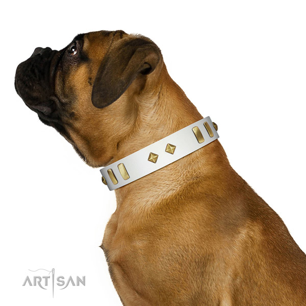 Comfy wearing reliable natural leather dog collar with studs