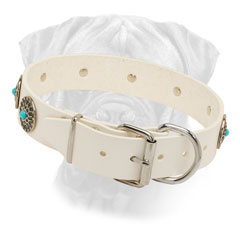White Leather Dog Collar for Bullmastiff with Nickel Plated Fittings