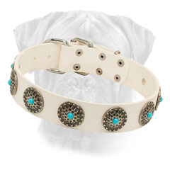 Fabulous White Leather Dog Collar for Bullmastiff with Silver Plated Circles
