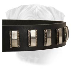 Non-Toxic Leather Collar