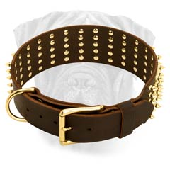 Leather Corosion Resistant Collar