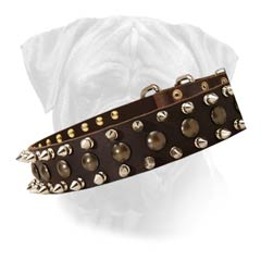 Handcrafted Bullmastiff Leather Decorated Collar With  Spikes And Studs