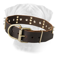 Bullmastiff Leather Dog Collar with buckle & D-ring