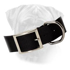 Durable Bullmastiff Nylon Buckled Collar