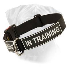 Bullmastiff Easy Care Nylon Collar With Quick Release  Buckle