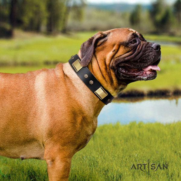 Bullmastiff stylish walking dog collar of soft leather