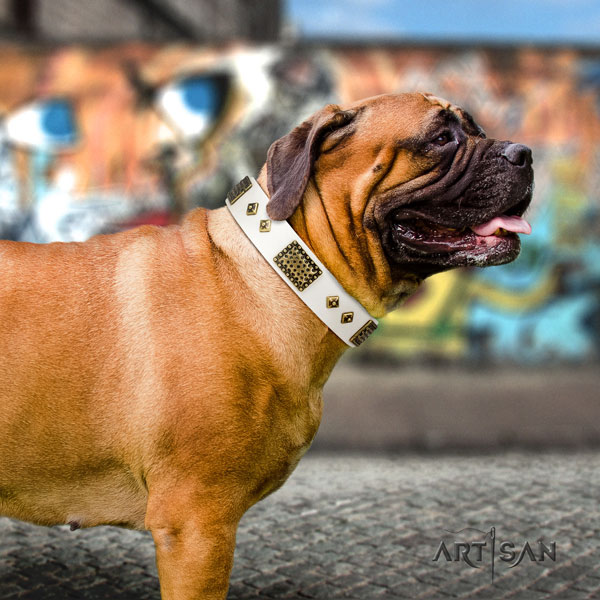 Bullmastiff daily walking dog collar of soft genuine leather