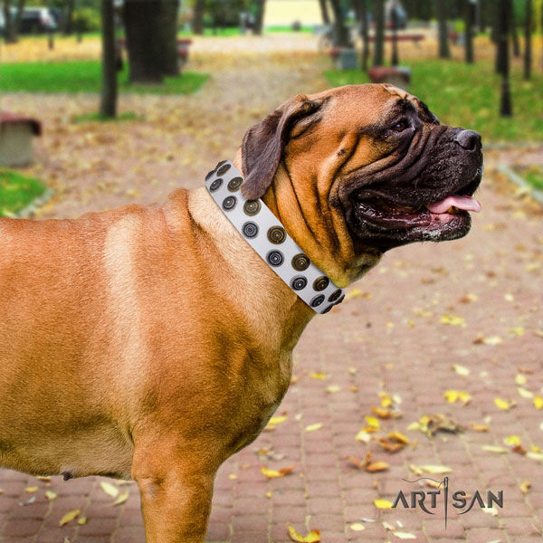 Bullmastiff comfortable wearing dog collar of fine quality natural leather