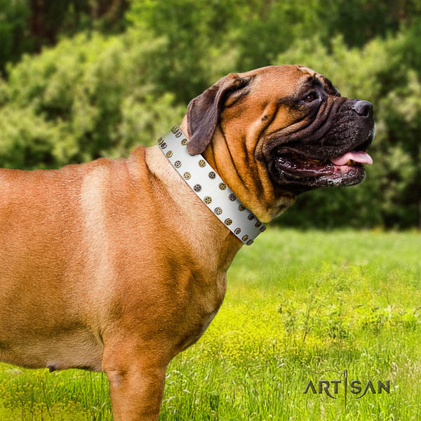 Bullmastiff easy wearing natural leather collar with decorations for your dog
