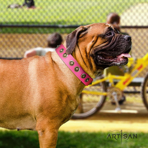 Bullmastiff comfy wearing natural leather collar with decorations for your canine