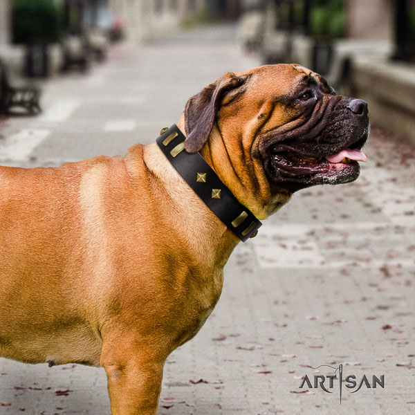 Bullmastiff handy use natural leather collar with decorations for your doggie