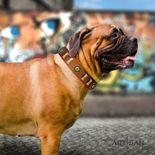 Bullmastiff basic training full grain leather collar with embellishments for your pet