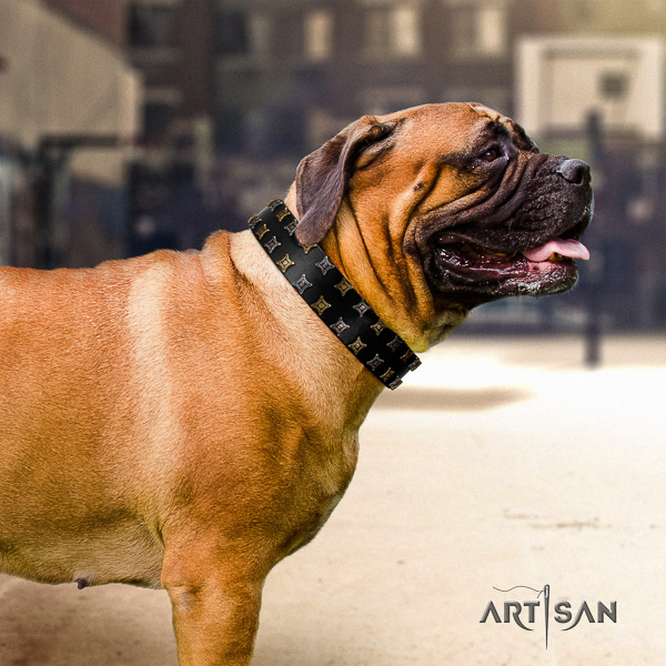 Bullmastiff comfortable wearing leather collar with embellishments for your four-legged friend