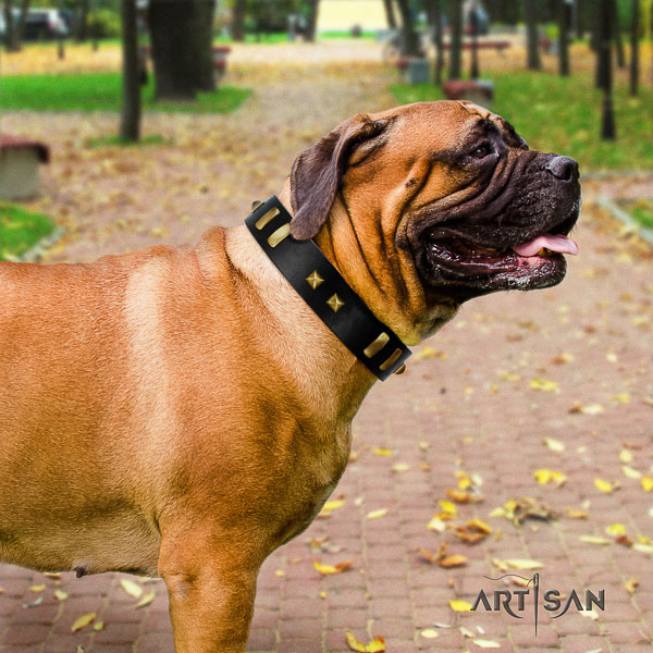 Bullmastiff easy wearing full grain natural leather collar with decorations for your dog