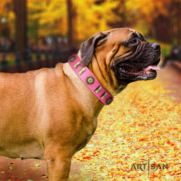 Bullmastiff everyday use full grain leather collar with embellishments for your pet