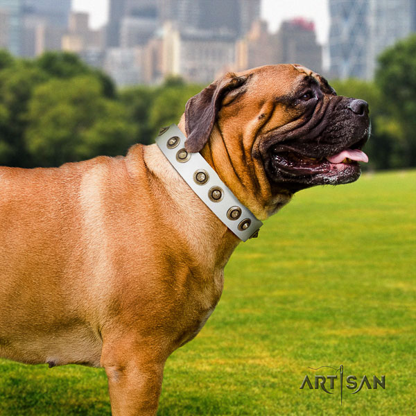 Bullmastiff easy wearing full grain natural leather collar with adornments for your canine