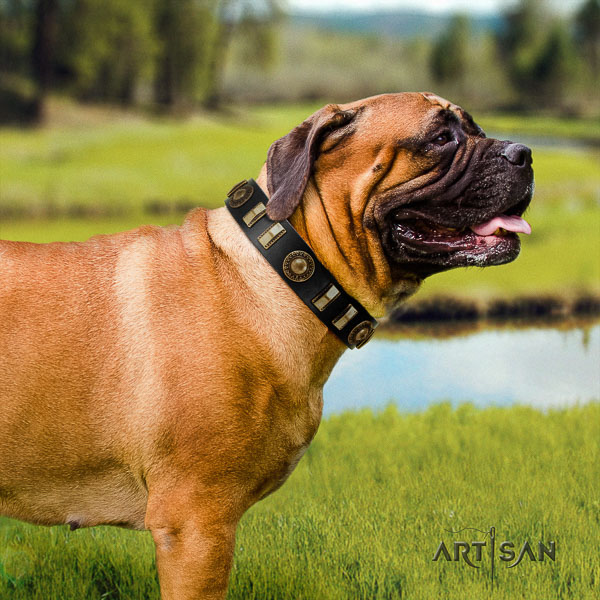 Bullmastiff handy use full grain leather collar with embellishments for your doggie