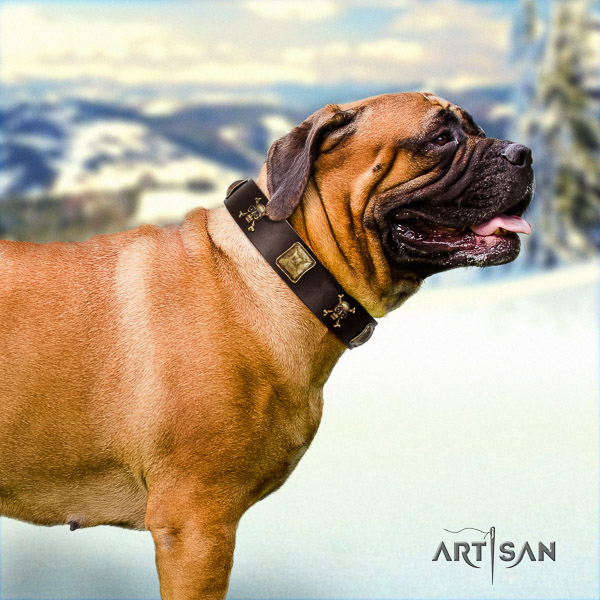 Bullmastiff walking full grain leather collar with adornments for your canine