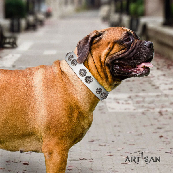 Bullmastiff stylish full grain leather dog collar with decorations for handy use