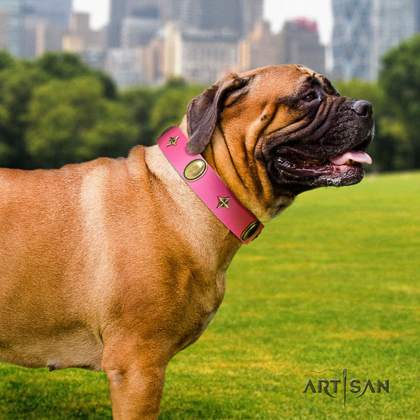 Bullmastiff comfortable wearing full grain natural leather collar with embellishments for your doggie