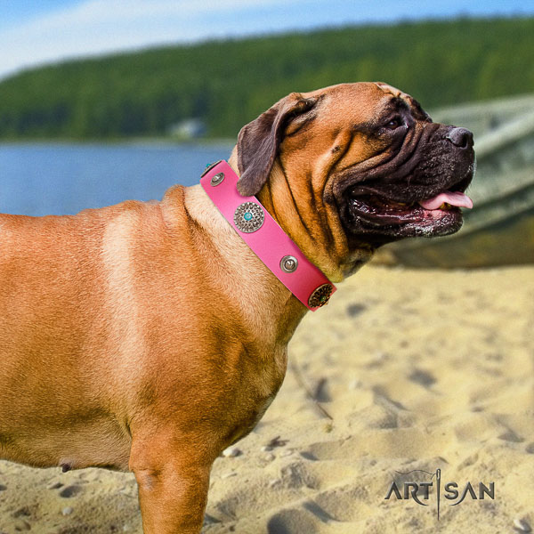 Bullmastiff stylish leather dog collar with embellishments for comfortable wearing