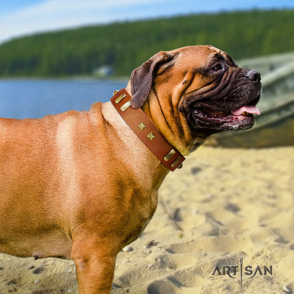 Bullmastiff easy wearing natural leather collar with adornments for your pet