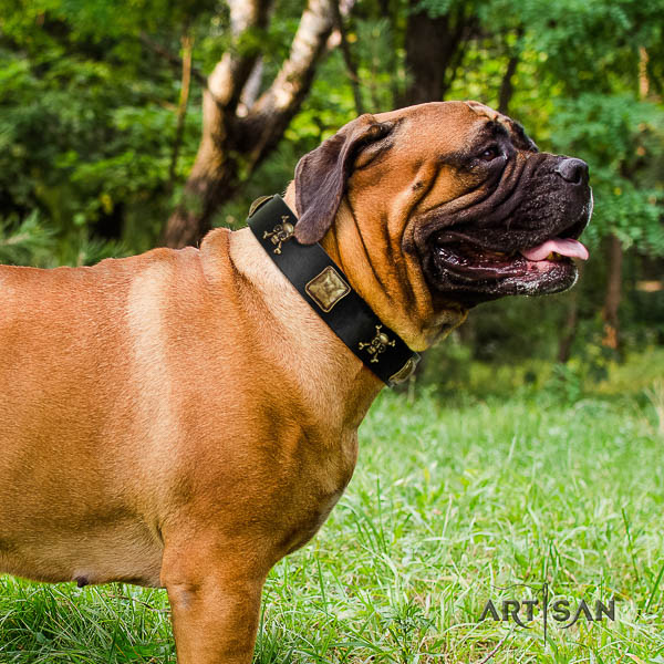 Bullmastiff handy use full grain natural leather collar with decorations for your four-legged friend