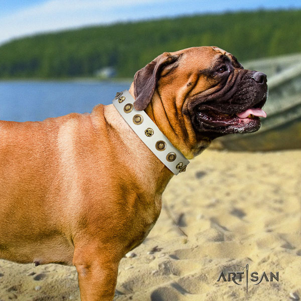 Bullmastiff comfy wearing natural leather collar with adornments for your four-legged friend