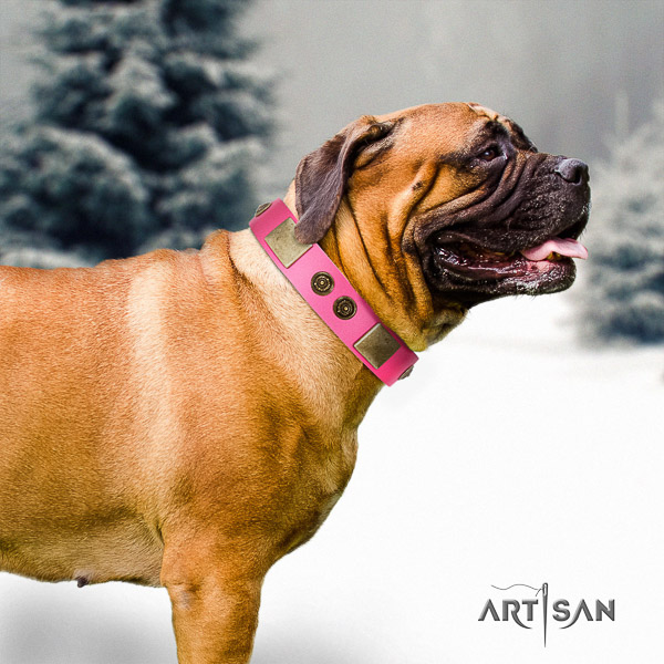 Bullmastiff daily use full grain natural leather collar with embellishments for your four-legged friend