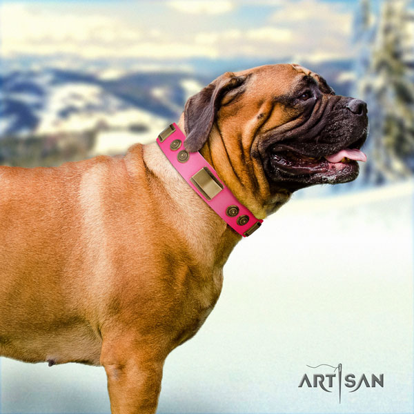 Bullmastiff daily use dog collar of exceptional quality leather