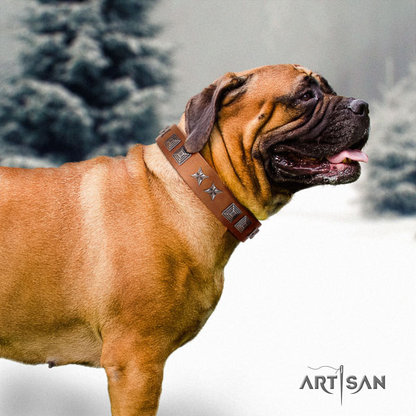 Bullmastiff incredible full grain leather collar with embellishments for your dog