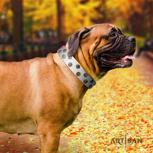Bullmastiff top notch genuine leather collar with adornments for your dog